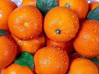 Собирать пазл Tangerines in the water онлайн