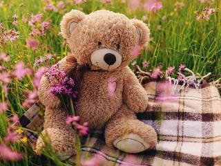 Собирать пазл Picnic for Teddy онлайн