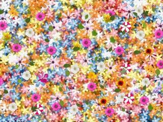 Собирать пазл A variety of colors онлайн