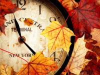 Собирать пазл Autumn time онлайн