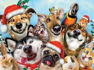 Собирать пазл Celebratory selfie онлайн