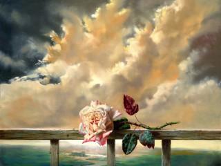 Собирать пазл Just a rose онлайн