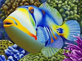 Собирать пазл A fish онлайн