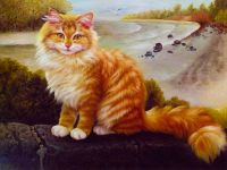 Собирать пазл Rufous and winsome cat онлайн