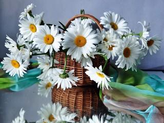 Собирать пазл Daisies in a basket онлайн