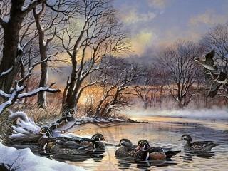 Собирать пазл A flock of ducks онлайн