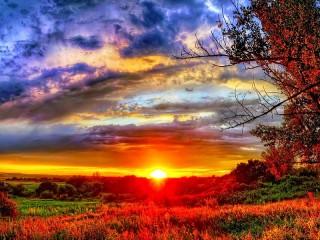 Собирать пазл In the rays of sunset онлайн