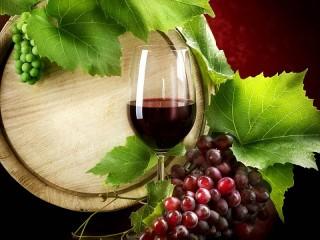Собирать пазл Wine and vine онлайн
