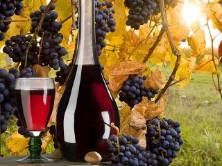 Собирать пазл Vinogradnoe vino онлайн