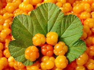 Собирать пазл Delicious berry онлайн