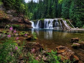 Собирать пазл Vodopad v lesu онлайн