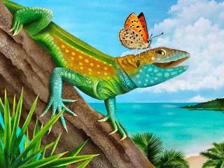 Собирать пазл Lizard and butterfly онлайн