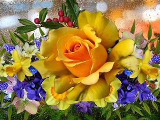 Собирать пазл Yellow rose онлайн
